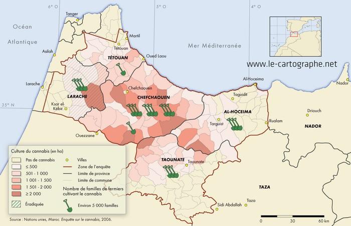 Des mains criminelles derrière la prolifération de la drogue mafia_culture_maroc