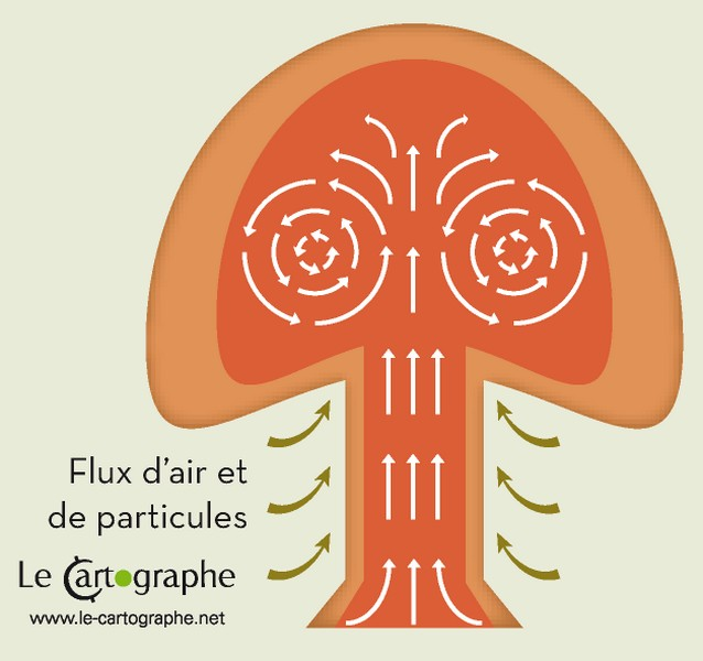 Illustration : La formation du champignon atomique